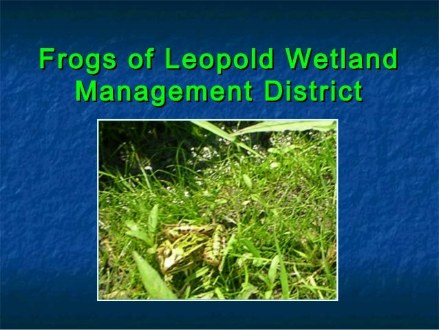 Frogs of Leopold WetlandFrogs of Leopold Wetland Management DistrictManagement District