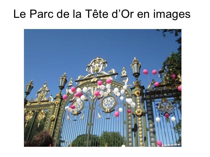 Le Parc de la Tête d'Or en images
