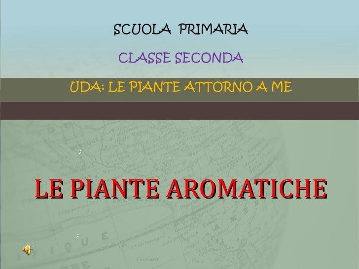 SCUOLA PRIMARIA       CLASSE SECONDA  UDA: LE PIANTE ATTORNO A MELE PIANTE AROMATICHE