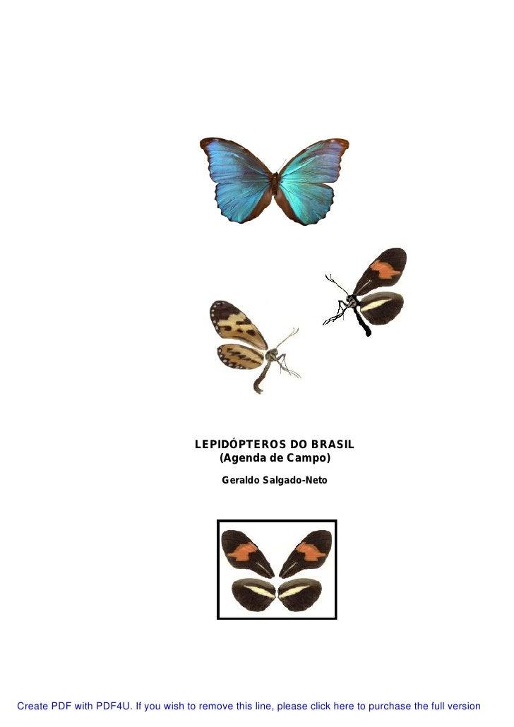 Lepidópteros do brasil (agenda de campo) geraldo salgado neto
