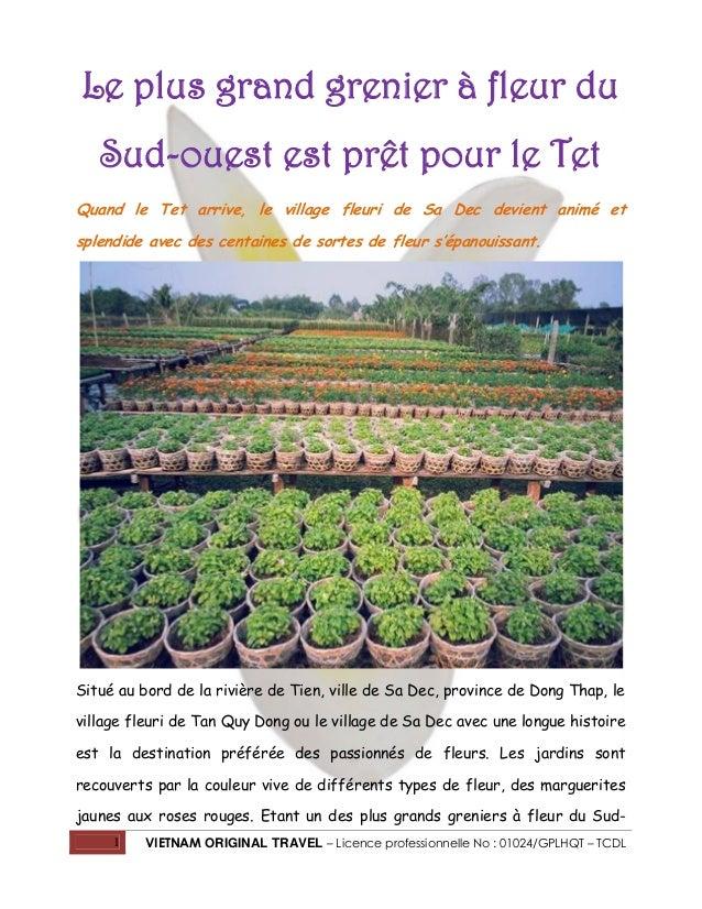 Le plus grand grenier à fleur du Sud-ouest est prêt pour le Tet Quand le Tet arrive, le village fleuri de Sa Dec devient a...