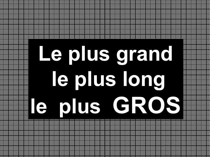 Leplusgroslepluslong
