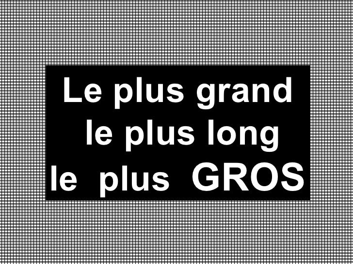 Le plus grand le plus long  le  plus  GROS
