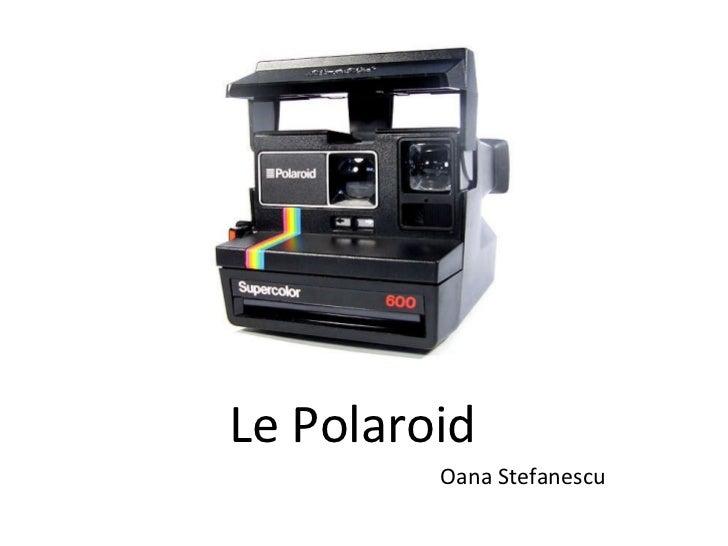 Le Polaroid Oana Stefanescu
