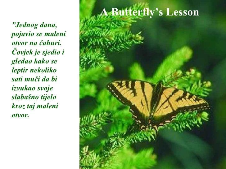 """A Butterfly's Lesson """" Jednog dana, pojavio se maleni otvor na čahuri. Čovjek je sjedio i gledao kako se leptir nekoliko s..."""