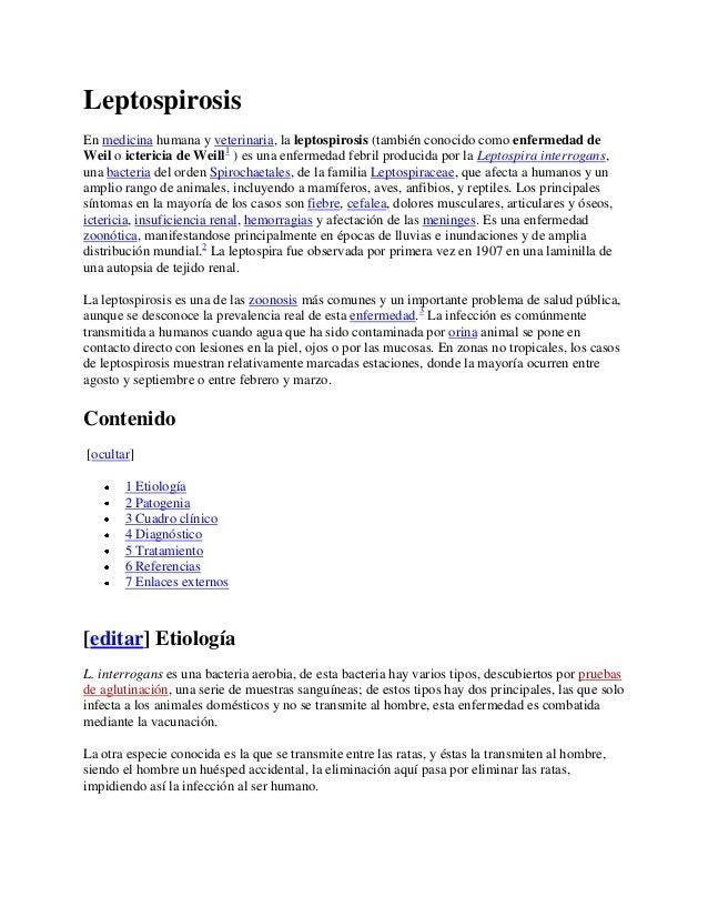 Leptospirosis En medicina humana y veterinaria, la leptospirosis (también conocido como enfermedad de Weil o ictericia de ...