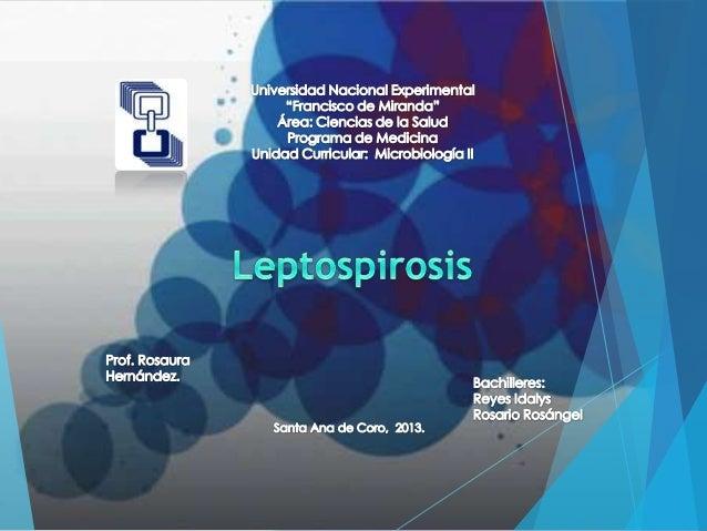 Del griego lepto (fino) y spira (espiral).  Es una zoonosis de distribución mundial causada por espiroquetas del genero Le...