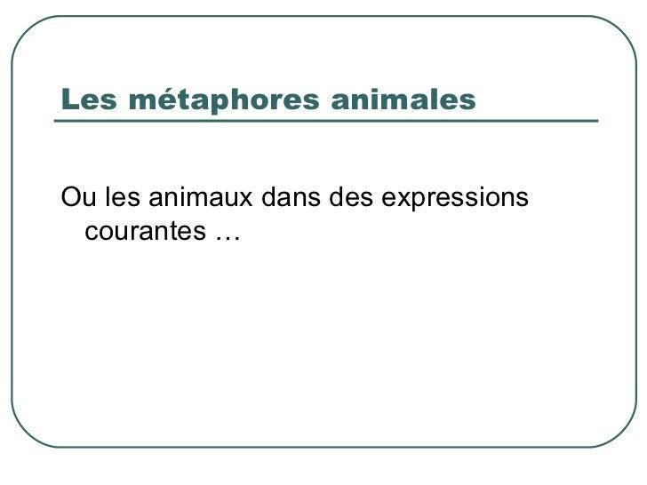 Les métaphores animales <ul><li>Ou les animaux dans des expressions courantes … </li></ul>