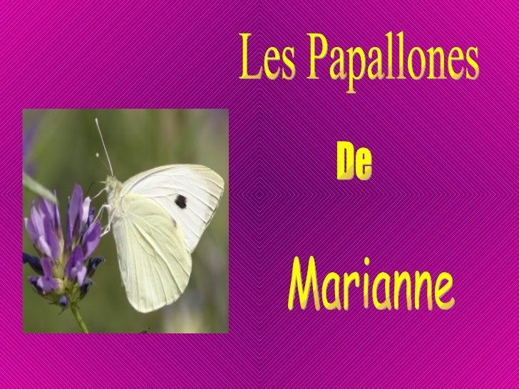 Les Papallones De Marianne