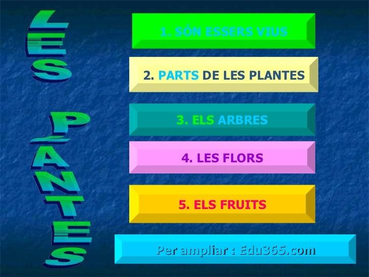 1 . SÓN  ESSERS  VIUS 2.  PARTS  DE LES PLANTES 3. ELS  ARBRES 4. LES FLORS 5. ELS FRUITS Per ampliar : Edu365.com LES PLA...