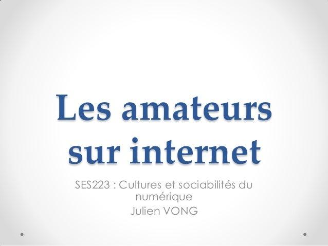 Les amateurs sur internet SES223 : Cultures et sociabilités du            numérique           Julien VONG