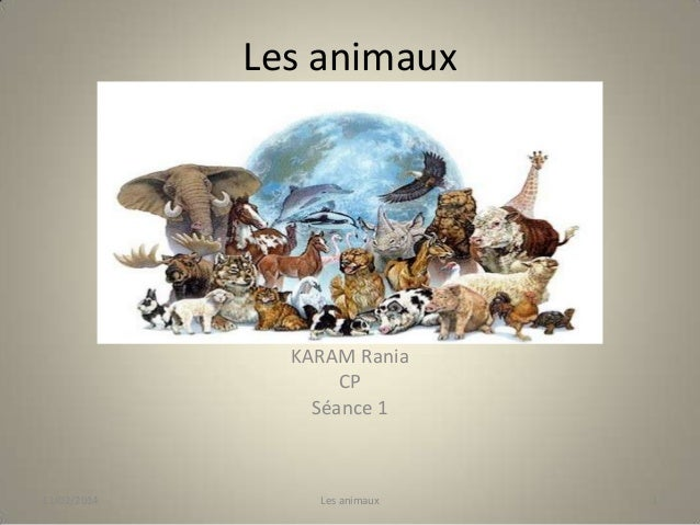 Les animaux  KARAM Rania CP Séance 1  11/02/2014  Les animaux  1