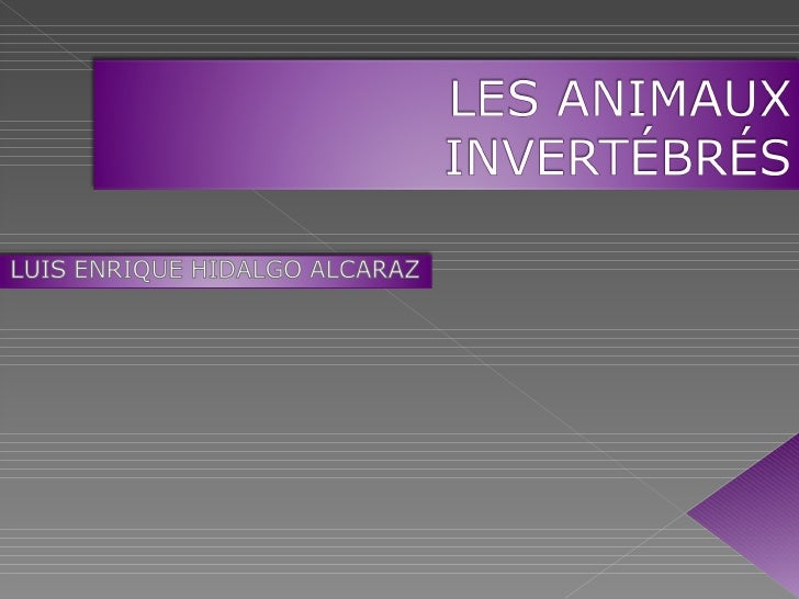 Les animaux invertébrés. luis enrique hidalgo. 5ºb. curso 2011 12