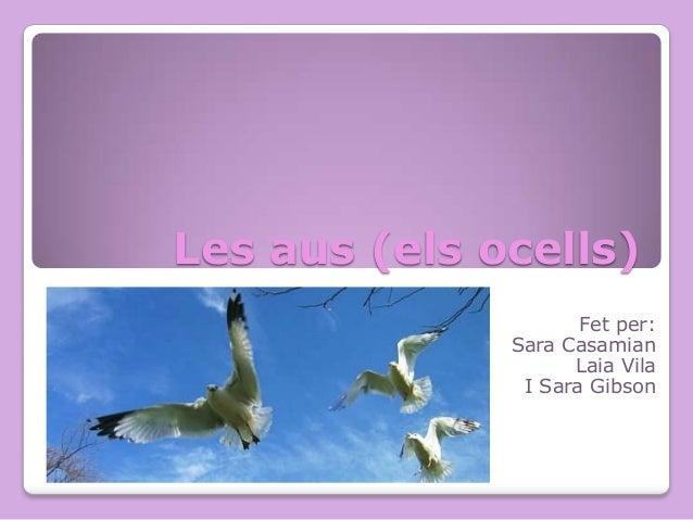 Les aus (els ocells) Fet per: Sara Casamian Laia Vila I Sara Gibson