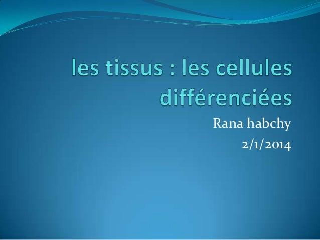 Rana habchy 2/1/2014