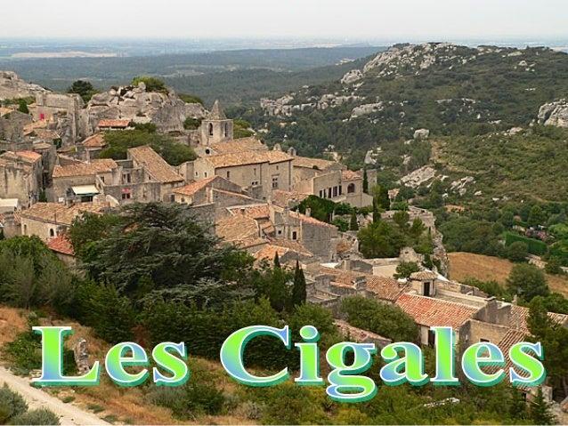 Un petit verger en Provence.
