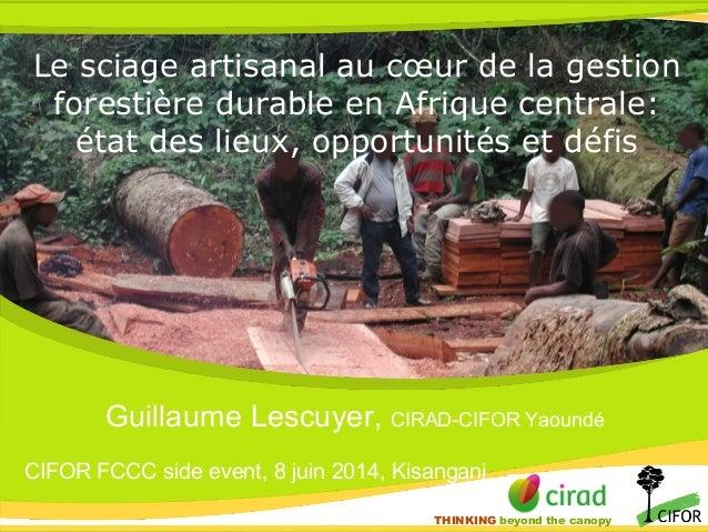 THINKING beyond the canopy THINKING beyond the canopy Le sciage artisanal au cœur de la gestion forestière durable en Afri...