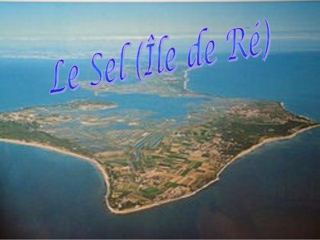 Lhistoire du sel• Les premiers marais de lîle de Réauraient été créés au 12ème et 13èmesiècle à linstigation des Religieux...