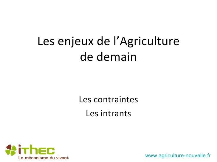 Les enjeux de l'Agriculture        de demain       Les contraintes         Les intrants                         www.agricu...