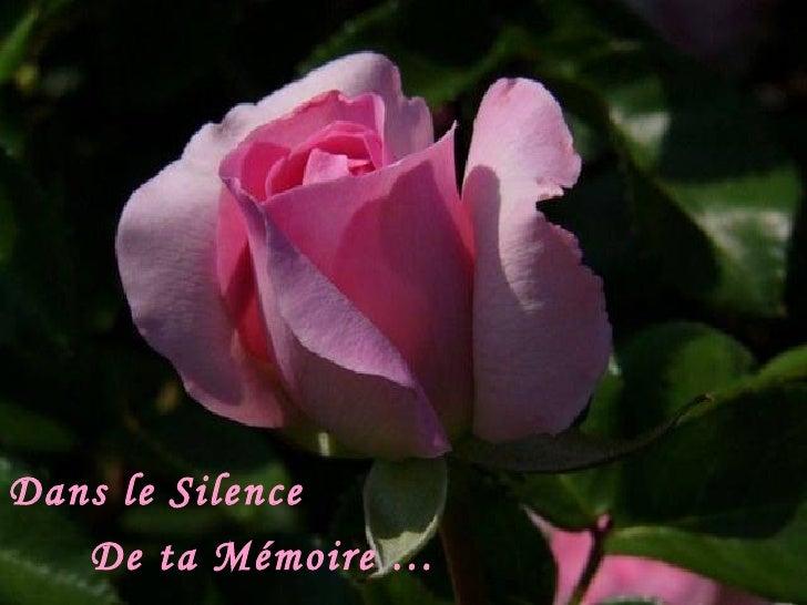 Dans le Silence  De ta Mémoire …