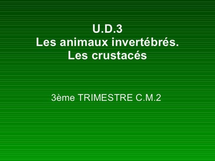 U.D.3 Les animaux invertébrés. Les crustacés 3ème TRIMESTRE C.M.2