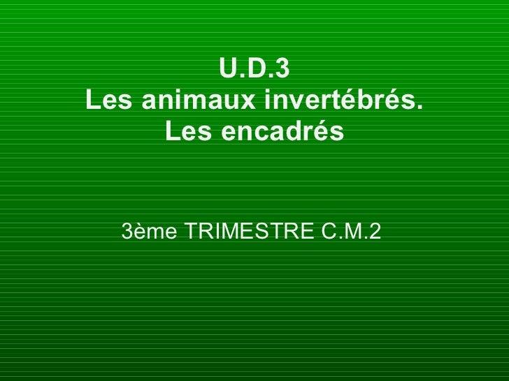 U.D.3 Les animaux invertébrés. Les encadrés 3ème TRIMESTRE C.M.2