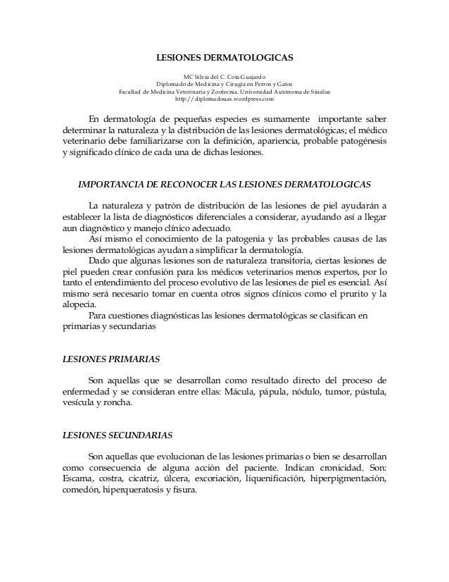 LESIONES DERMATOLOGICAS MC Silvia del C. Cota Guajardo Diplomado de Medicina y Cirugía en Perros y Gatos Facultad de Medic...