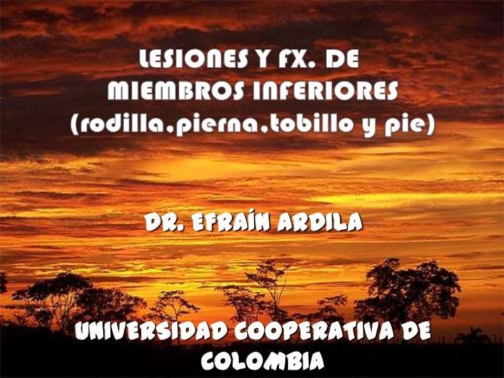 DR. EFRAÍN ARDILAUNIVERSIDAD COOPERATIVA DE         COLOMBIA