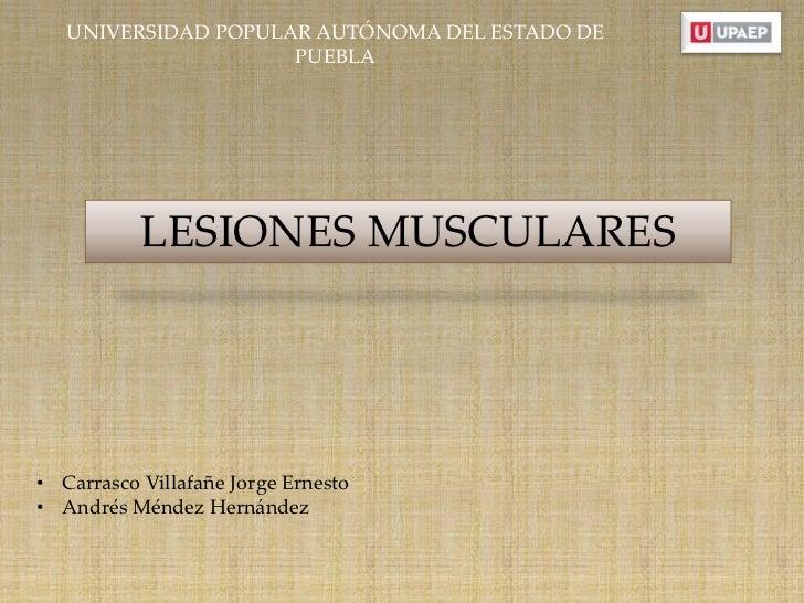 UNIVERSIDAD POPULAR AUTÓNOMA DEL ESTADO DE                     PUEBLA           LESIONES MUSCULARES• Carrasco Villafañe Jo...