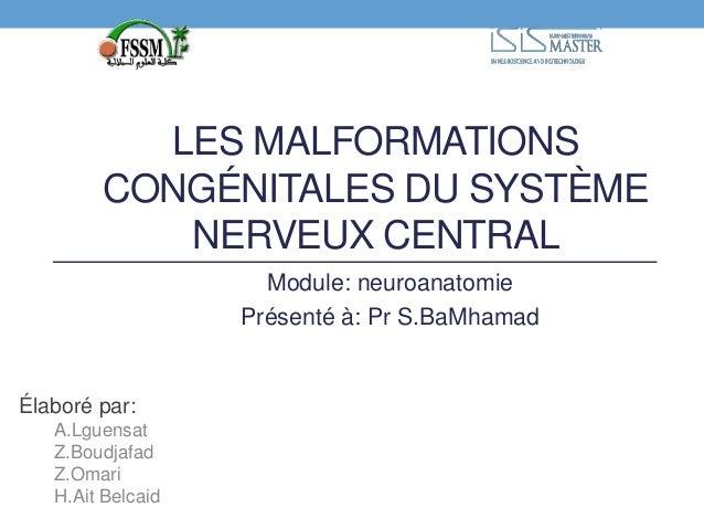 LES MALFORMATIONS  CONGÉNITALES DU SYSTÈME  NERVEUX CENTRAL  Élaboré par:  A.Lguensat  Z.Boudjafad  Z.Omari  H.Ait Belcaid...