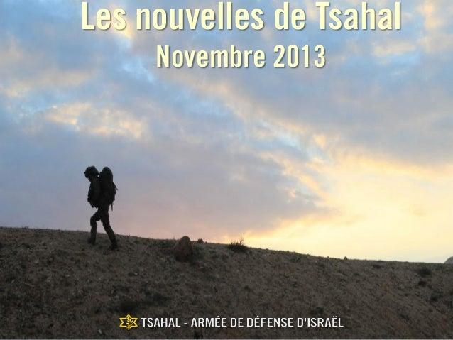 Les nouvelles de Tsahal Novembre 2013