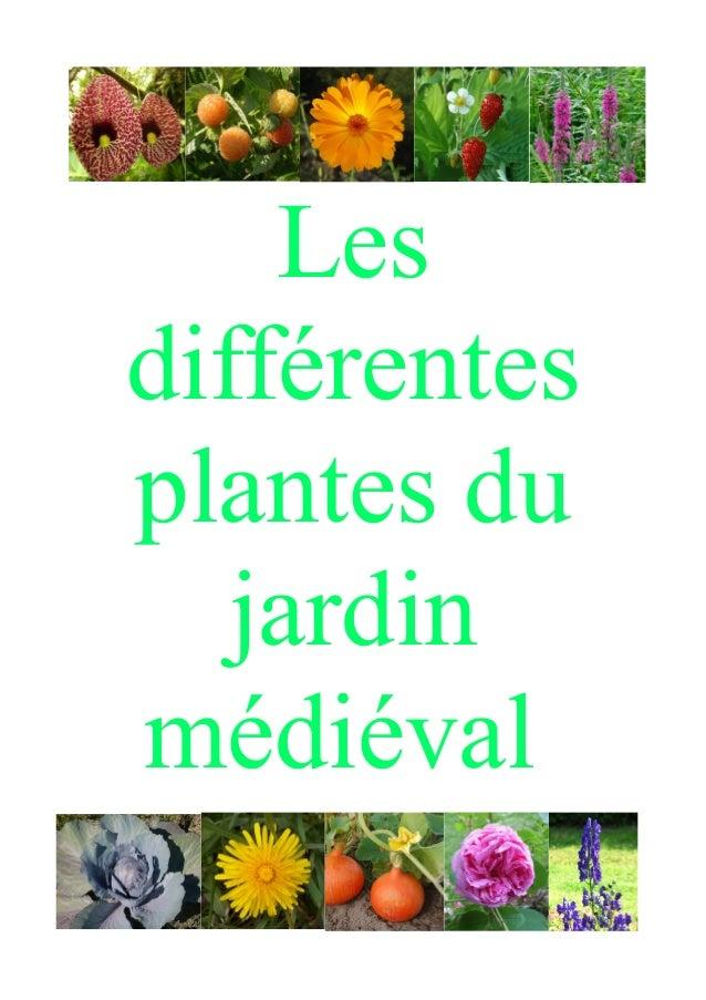 Les plantes du jardin m di val de bazoges en pareds for Les plantes du jardin