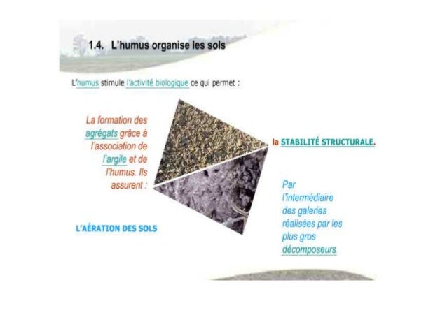 Les propriétés biologiques sol1