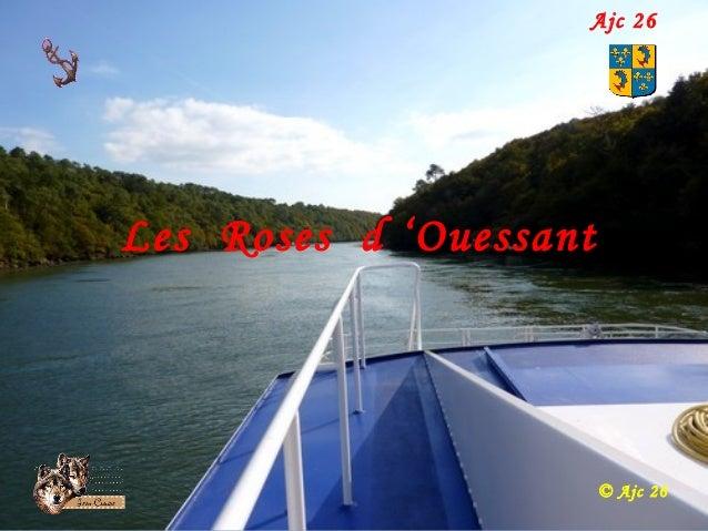 Les Roses d 'Ouessant © Ajc 26 Ajc 26
