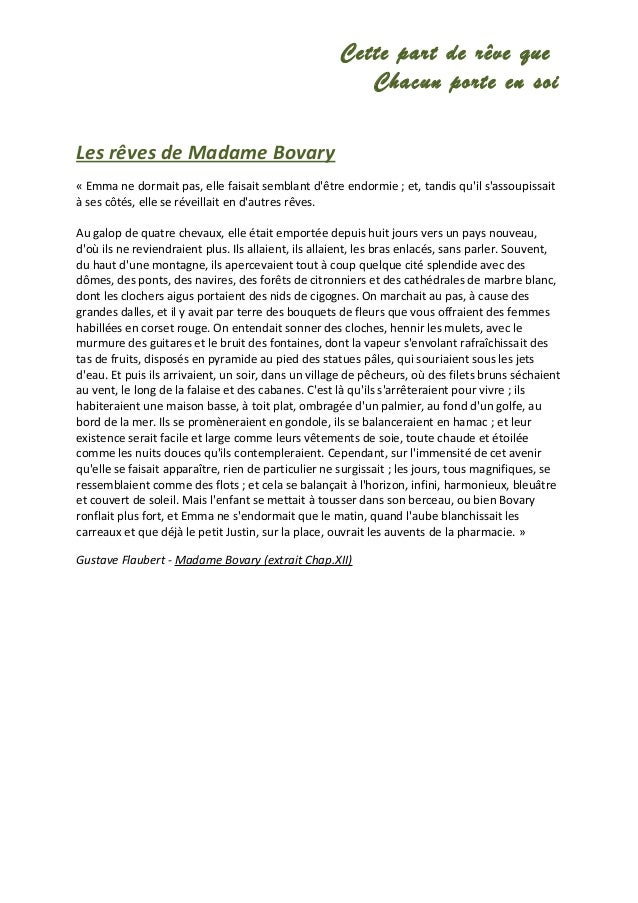 Critical analysis madame bovary essays