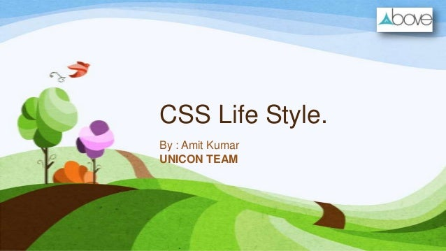 CSS Life Style. By : Amit Kumar UNICON TEAM