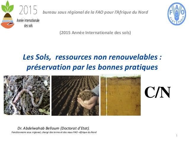 Les Sols, ressources non renouvelables : préservation par les bonnes pratiques bureau sous régional de la FAO pour l'Afriq...