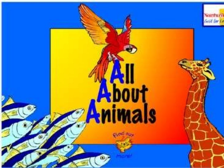 Lesson about Animal Groups