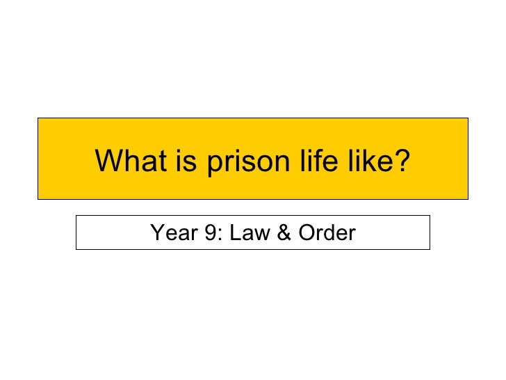 What is prison life like? Year 9: Law & Order