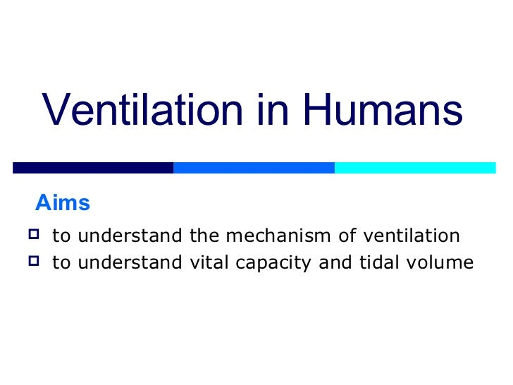 Lesson 5 Mechanisms Of Ventilation