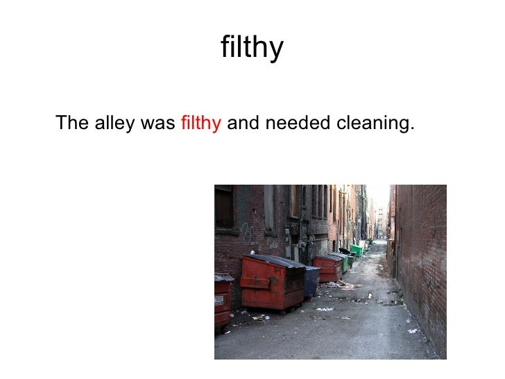 filthy  The alley was filthy and needed cleaning.