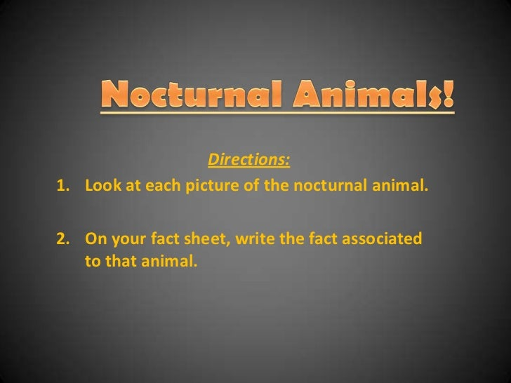 Nocturnal Animals!<br />Directions:<br />Look at each picture of the nocturnal animal.<br />On your fact sheet, write the ...