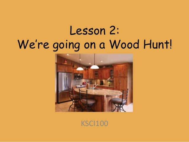 Lesson 2:We're going on a Wood Hunt!           KSCI100