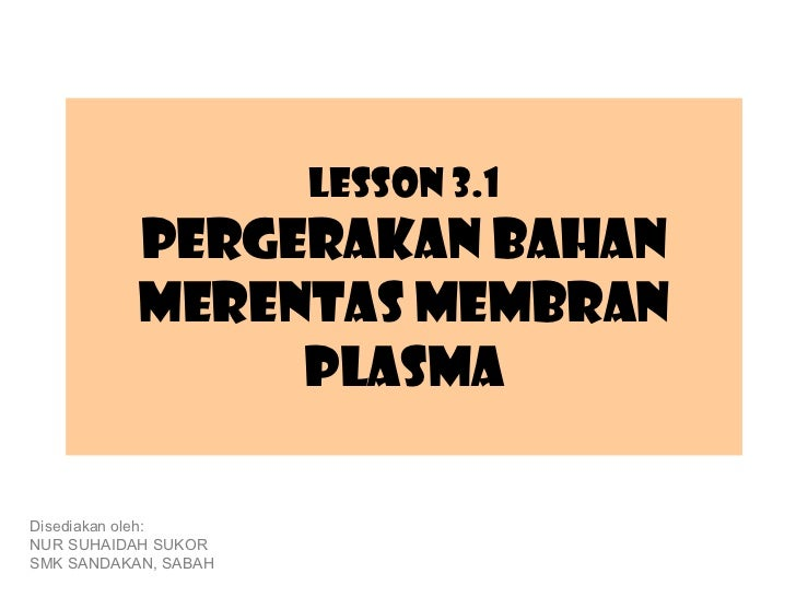 Lesson 3.1