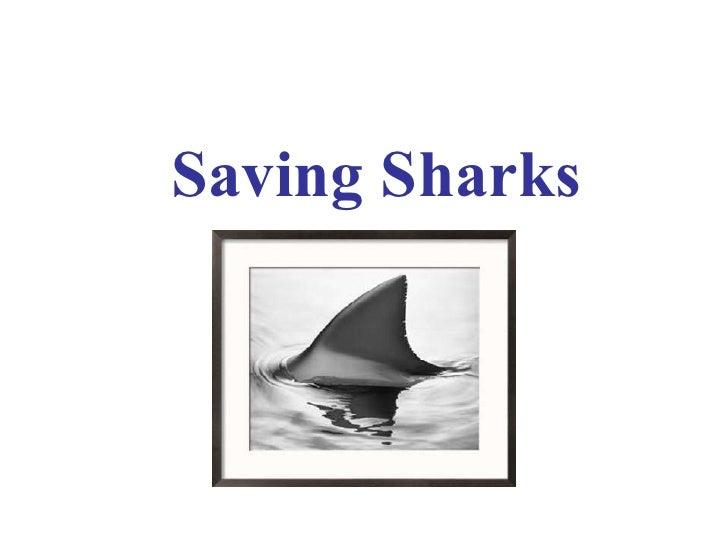 Saving Sharks