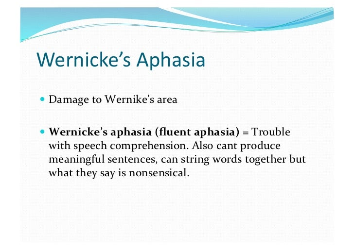wernickes aphasia disorder essay