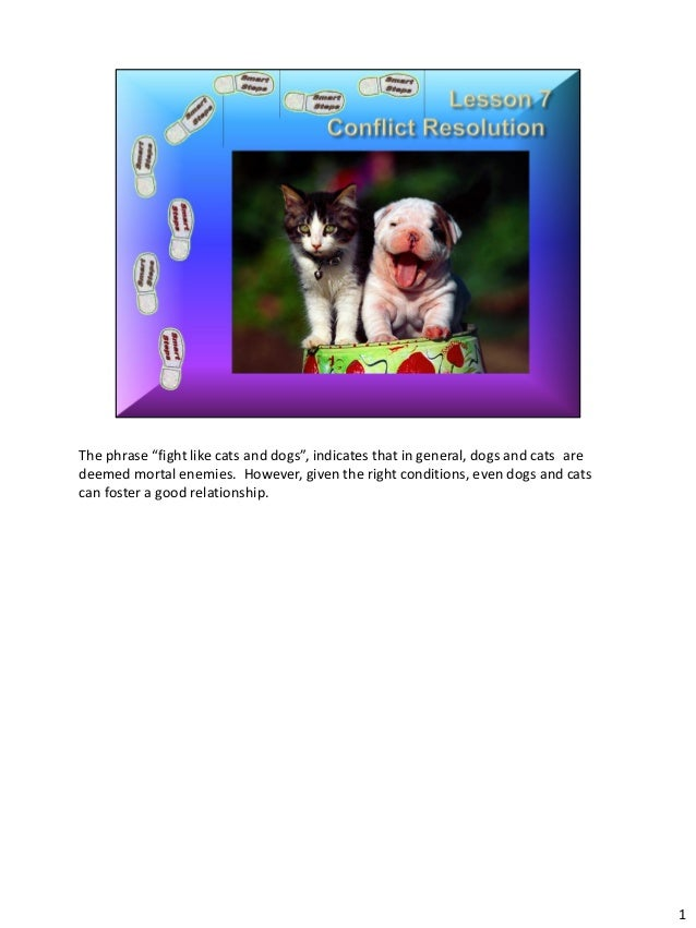"""The phrase """"fight like cats and dogs"""", indicates that in general, dogs and cats aredeemed mortal enemies. However, given t..."""