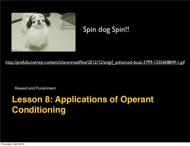 Lesson 8 application of operant conditioning