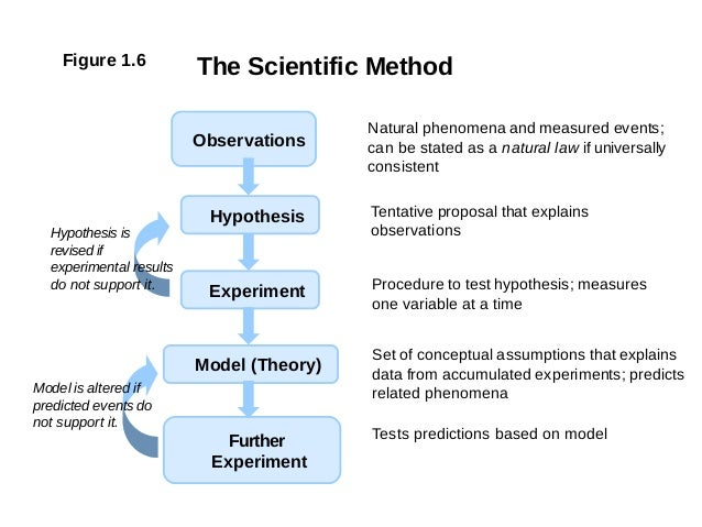 Experiment Hypothesis Hypothesis Experiment