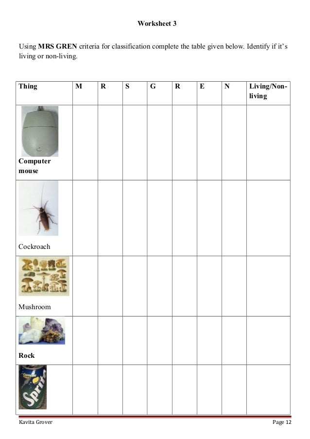 Pla  Earth   Freshwater worksheet additionally Characteristics Of Life Worksheet Answers further Characteristics Of Bacteria Worksheet Answer Key – 7th Grade Math likewise Characteristics Of Life Worksheet The best worksheets image moreover Characteristics of Life Worksheet Answers  1    Cats  17K views as well Middle Science Cloze Worksheet   Characteristics of Life   TpT furthermore 17 ly Pythagoras theorem Worksheet with Answers   Credit Card in addition  also Characteristics Of Life Worksheet Answers Petency Meaning besides Characteristics Of Living Things Worksheet   Croefit in addition  as well 4 Characteristics of Living Things Worksheet set with keys   TpT besides  likewise Characteristics Of Life Worksheet   Winonarasheed additionally  further 17 Best Images of For High Biology Worksheets Chapter 4. on characteristics of life worksheet answers
